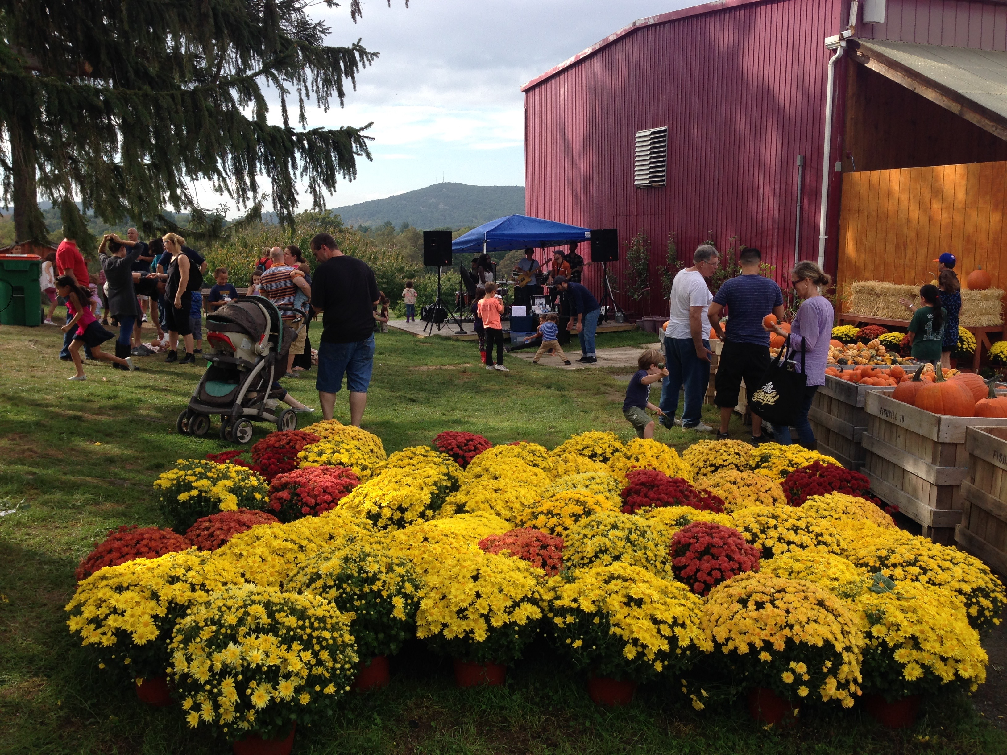 Farm Festivalsimage