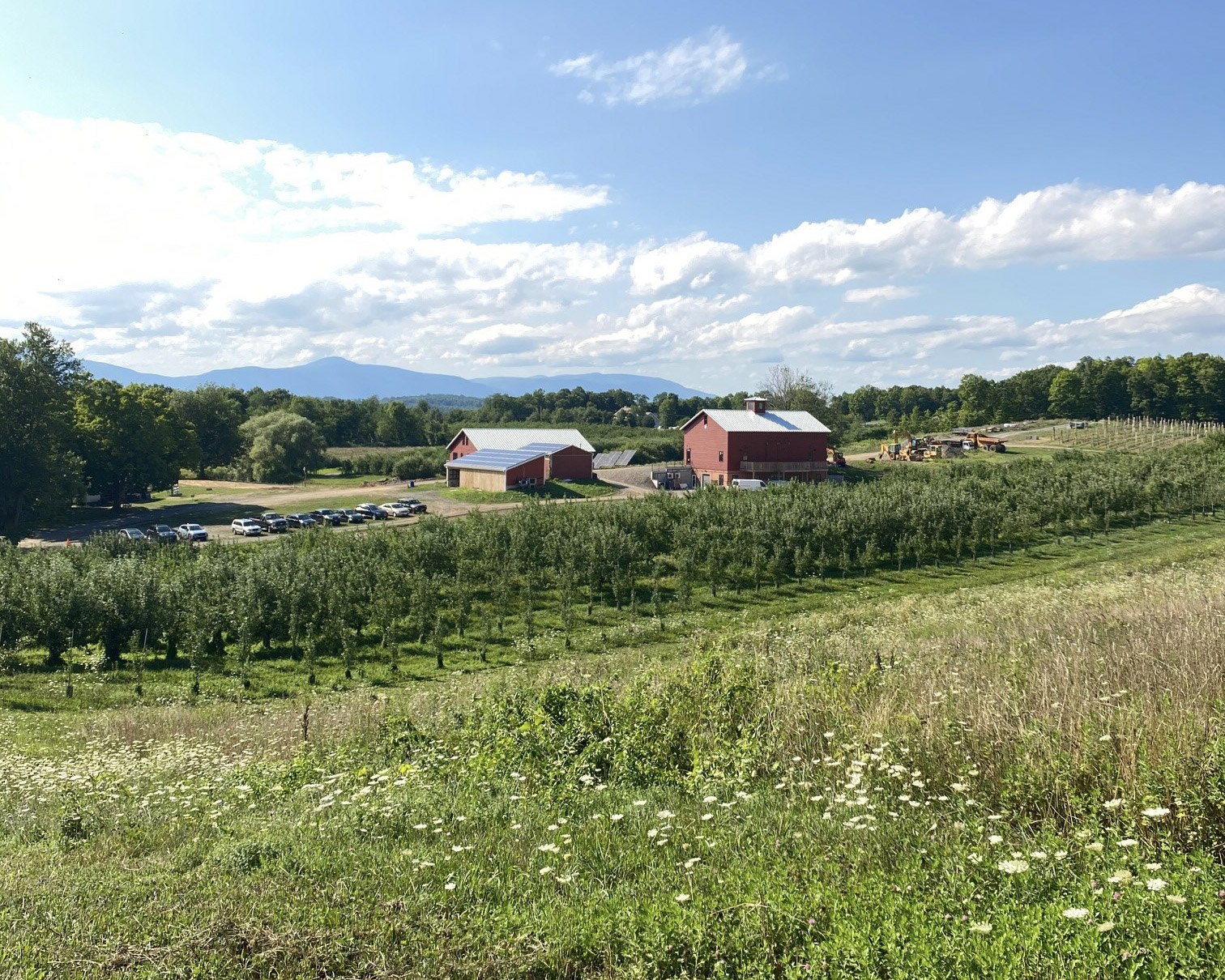 Outdoor Art Classes on Rose Hill Farm image
