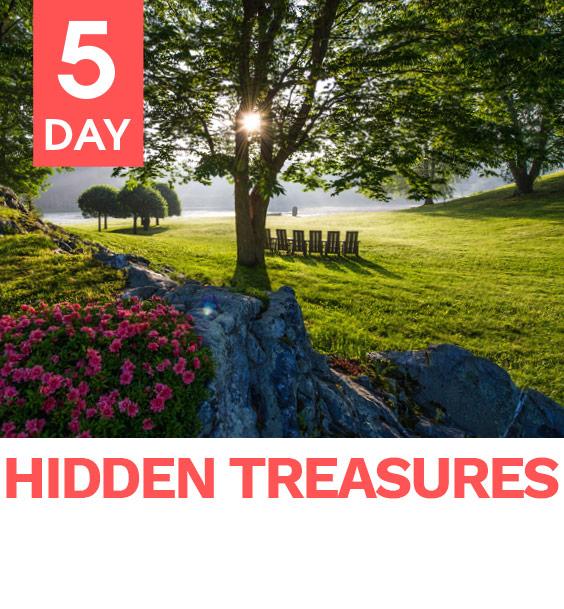 hidden_treasures_image